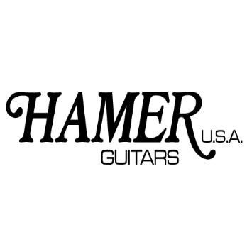 ヘイマーギター